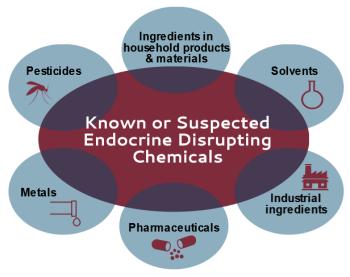 EndocrineDisruptors