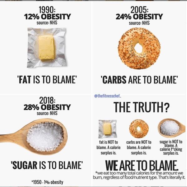 FoodLogging-Truth-Ownership