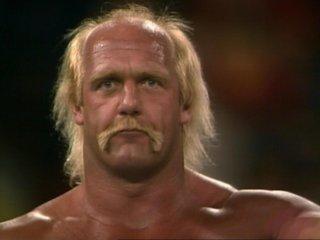 Hulk Hogan Hair Brother-3.9.18.jpg