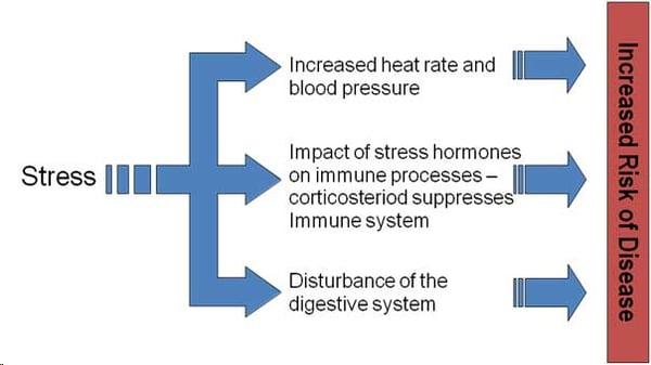 stress-illness